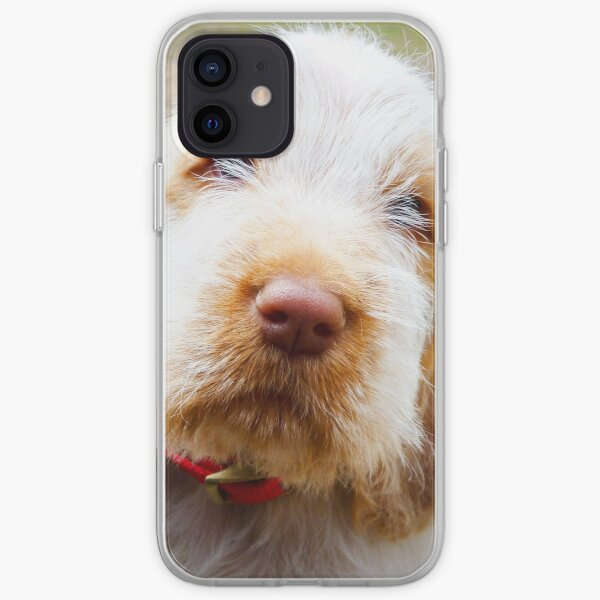 Lifetime of love Spinone iPhone Soft Case