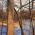 Christana Creek by Judy Seltenright