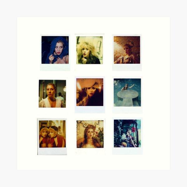 Stevie Polaroids Art Print