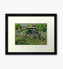Push and Pull Framed Print