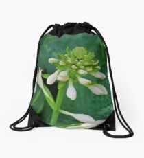 Insincere Secrets Drawstring Bag