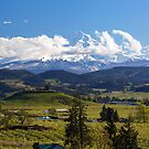 Moutn Hood with rolling clouds over fruit farm orchards in Hood River OR by davidgnsx1