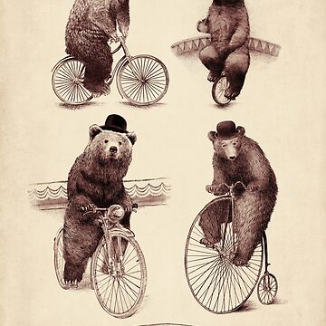Bears on Bicycles by opifan
