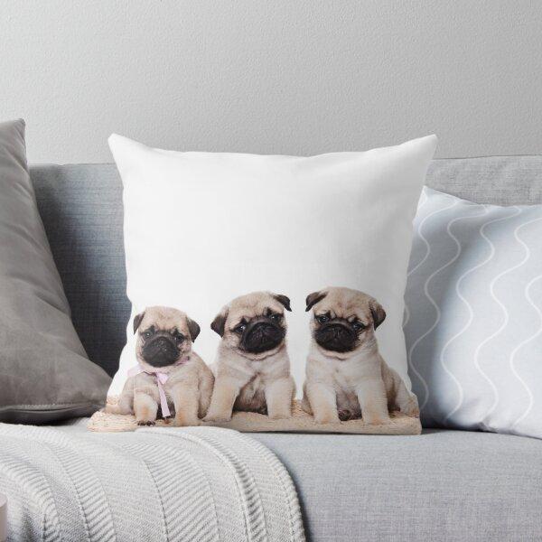 Three pug puppy Throw Pillow