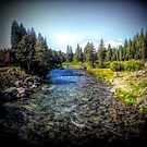 The Truckee River by Joe Lach