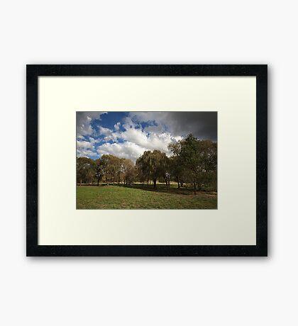 Natural Landscape Framed Print