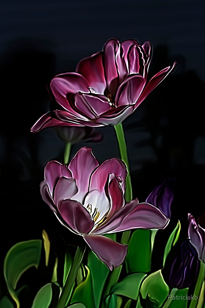 Purple tulips.... by Patriciakb