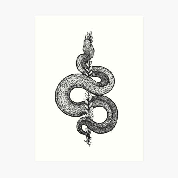 Schlange und ein Farn Kunstdruck