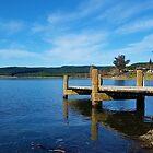 Klassisches Kiwi Dock - Motutere Bay, Taupo, NZ von CleverCharles
