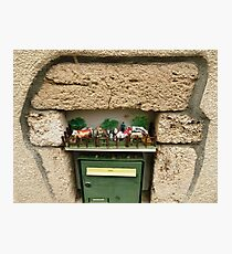 Funny letterbox! Photographic Print