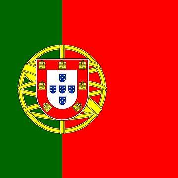 Portugal - National Flag - Current by CrankyOldDude