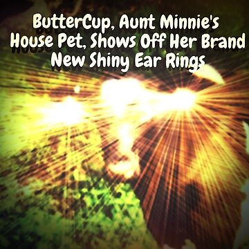 """Buttercup, Aunt Minnie's House Pet, Shows Off Her Brand New Shiny Ear Rings""... prints and products by ArtbyBob"