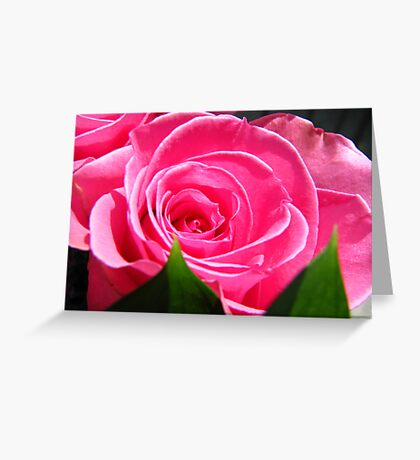 Cuddle Me... Greeting Card