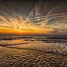 the sea by Nicole W.