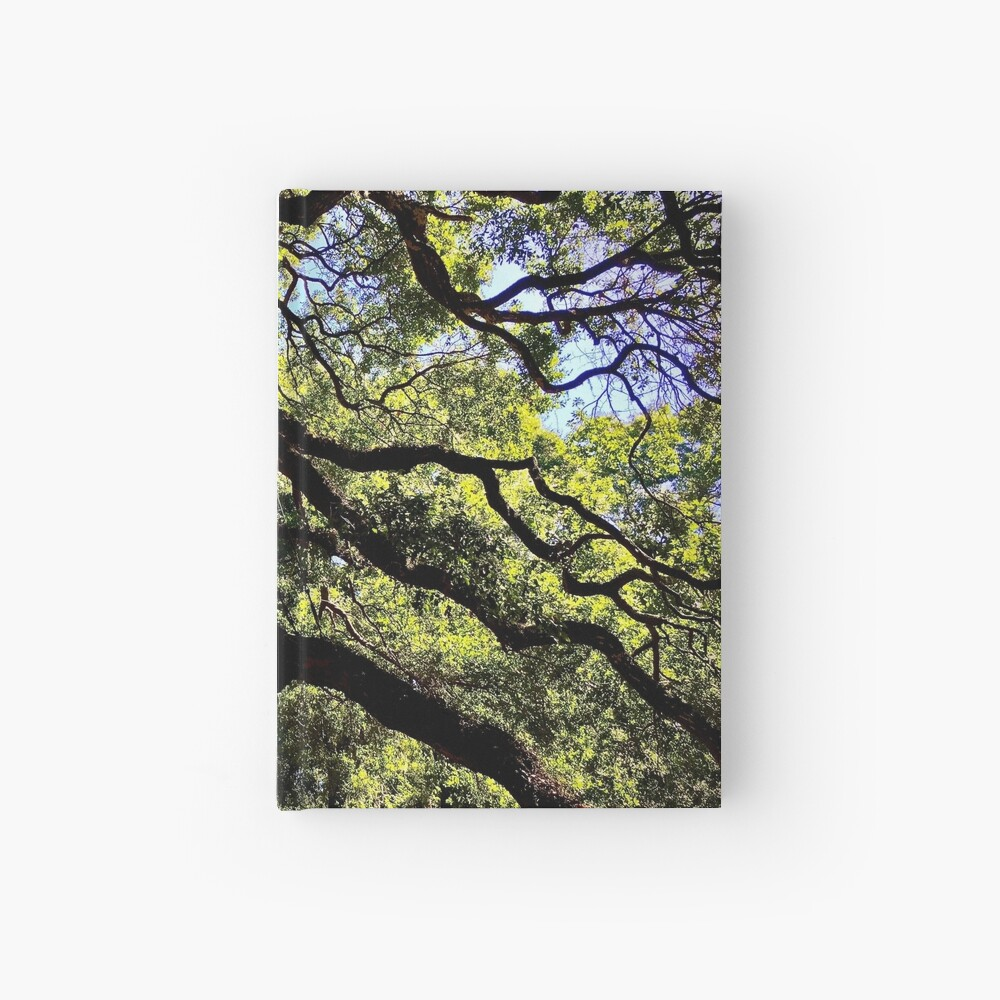 Angel Oak Arms Hardcover Journal