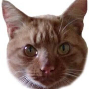Clyde by jojobongo