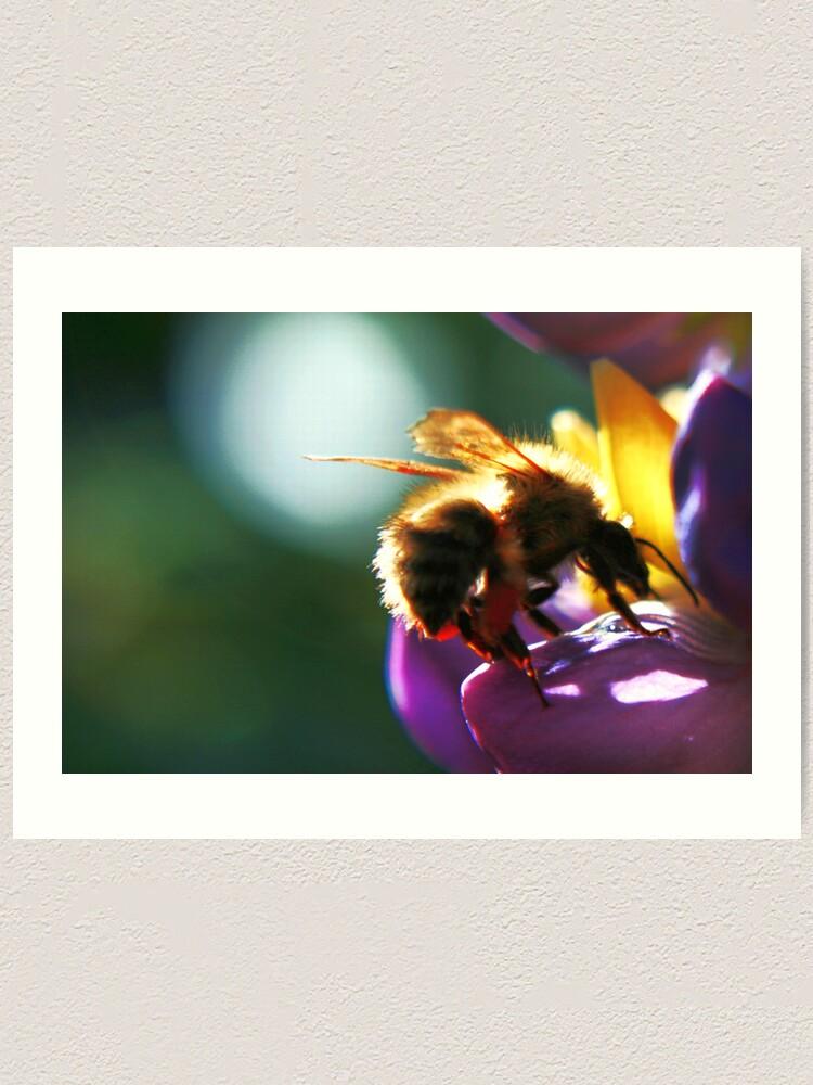Alternate view of Bumblebee Art Print
