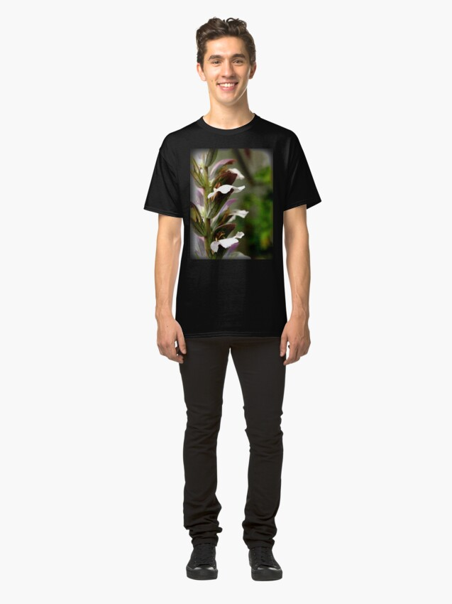 Alternate view of Acanthus from A Gardener's Notebook Classic T-Shirt