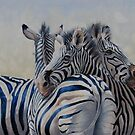 360 Degree Zebras by Pauline Sharp