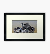 360 Degree Zebras Framed Print
