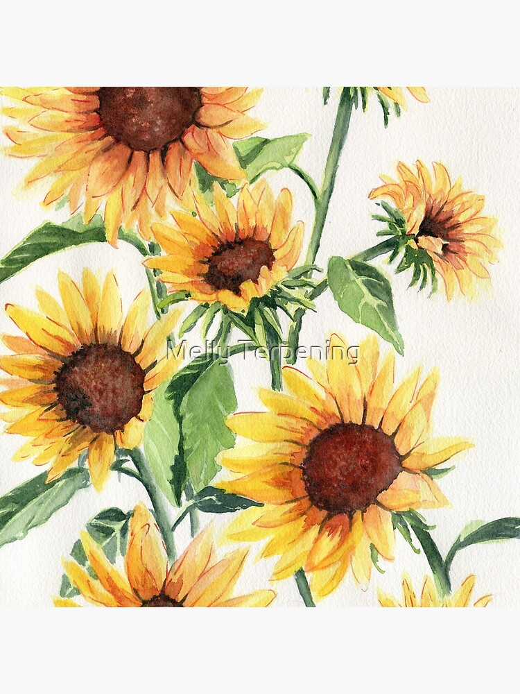 Sunflowers by MellyTerp