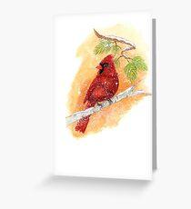 Kardinal Vogel Grußkarte