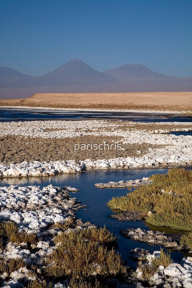 Licancabur volcano from Cejar Pond, Atacama Desert, Chile by parischris