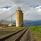 dooen silos by Andrew Cowell