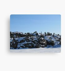 Winter on the Island Canvas Print