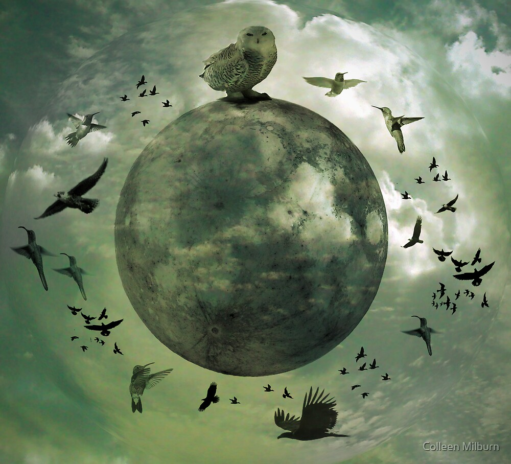 The moon and her dancing minions by Colleen Milburn