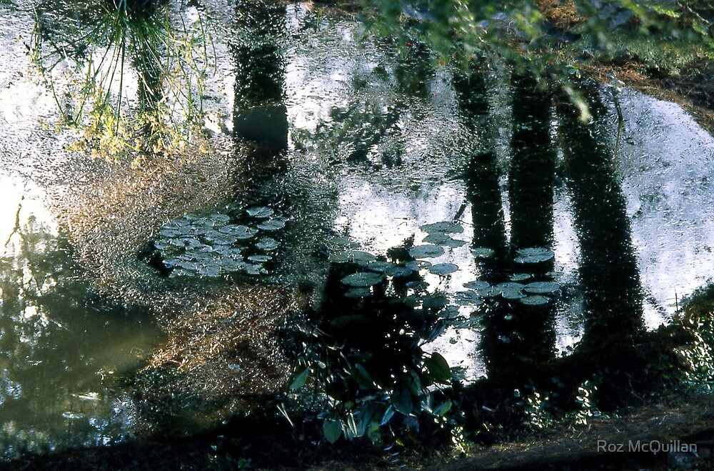 Reflections by Roz McQuillan
