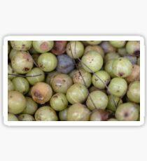 Juicy grapes  Sticker