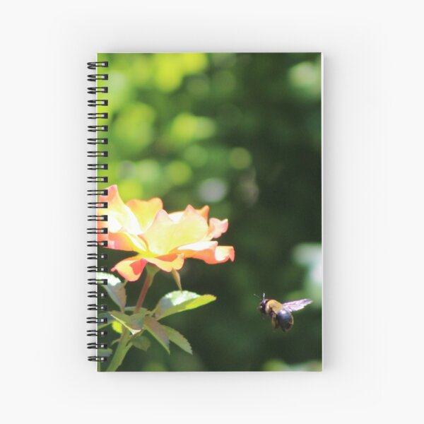 Bee Flying to Atomic Tangerine Rose Spiral Notebook