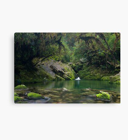 The Crystal Pool at the Riwaka Resurgence Canvas Print