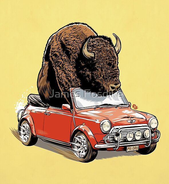 Bison in a Mini 2015 by James Fosdike