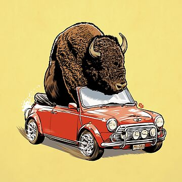 Bison in a Mini 2015 by MrFoz
