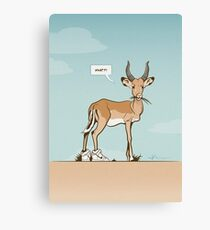 Impala wearing sneakers Canvas Print
