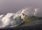 Surfer at Ala Moana Bowls .3 by Alex Preiss