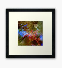 Vibrational symphony in Linaji major Framed Print