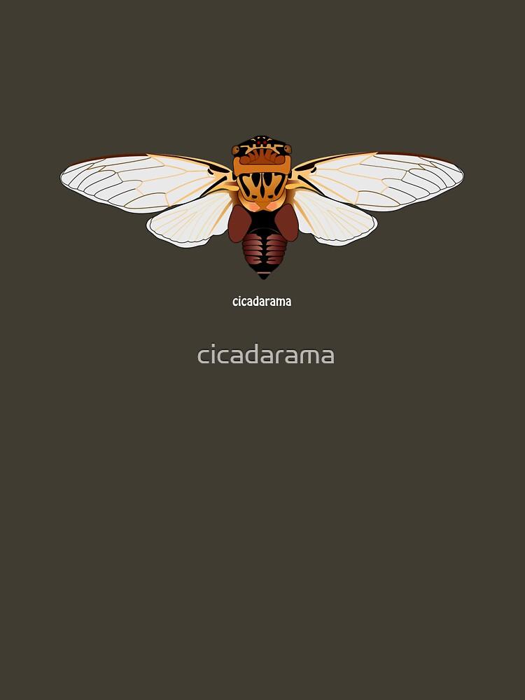 Eastern Double Drummer Cicada (cicadarama) by cicadarama