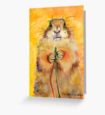 COLORADO HOMESTEADER Greeting Card