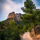 Trail to the ridge by Ralph Goldsmith
