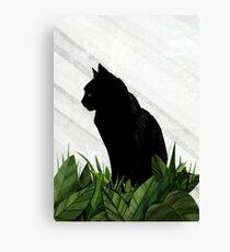 Black Cat in a greenhouse Canvas Print