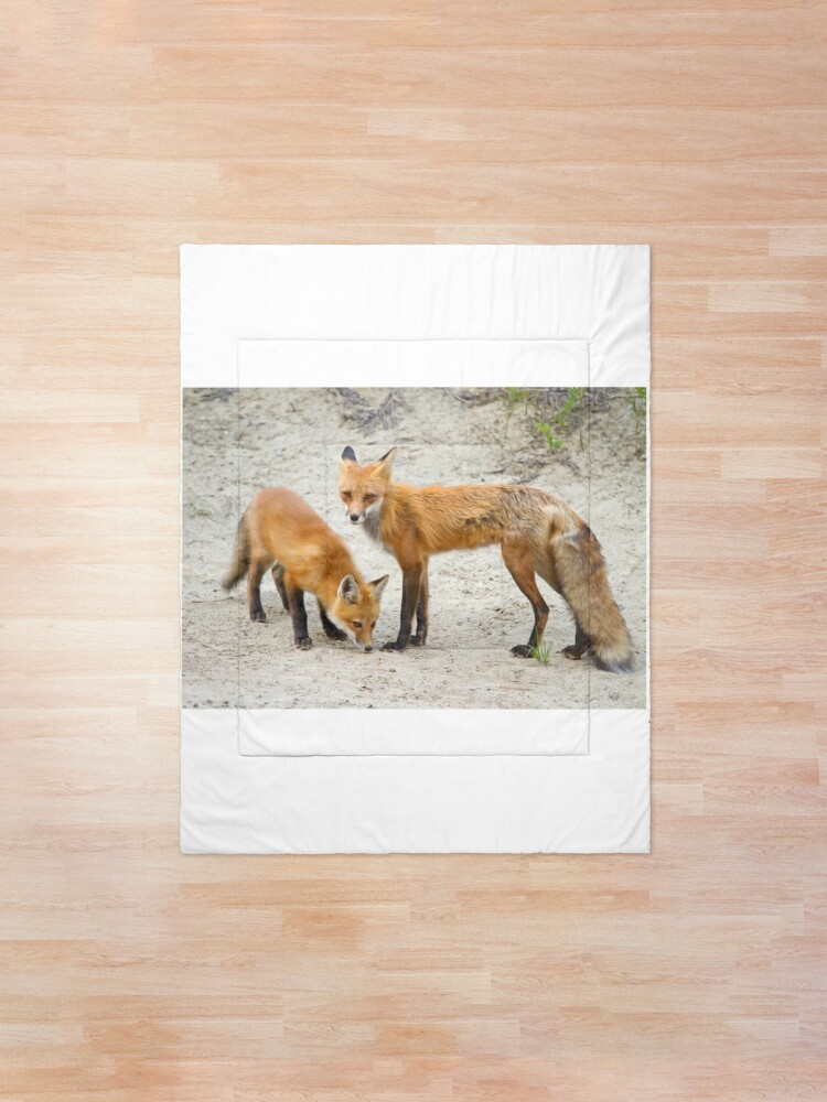 Alternate view of Red fox family Comforter