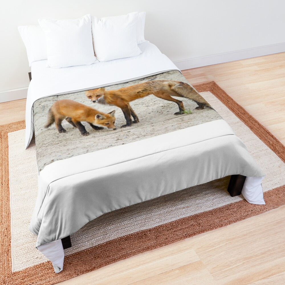 Red fox family Comforter