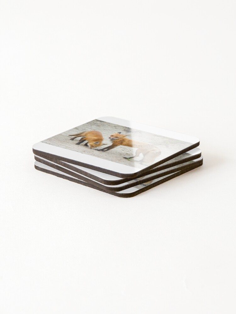 Alternate view of Red fox family Coasters (Set of 4)
