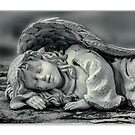 Stone Pillow by jules572