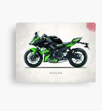 The Ninja 650 Canvas Print