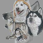 Sibirischer Husky Medley von BarbBarcikKeith