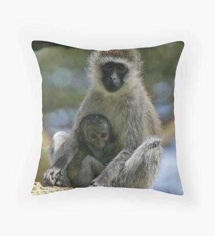 Vervet monkey & baby Throw Pillow